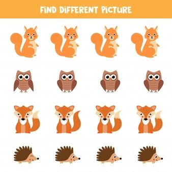 Find Animal In Reach Row Which Is Different From Others Bugs Preschool Animals Illustration Story