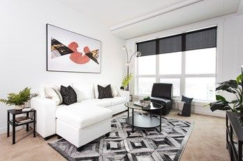 One Bedroom Apartment For Rent Calgary In 2020 1 Bedroom Apartment One Bedroom Apartment Apartment Interior