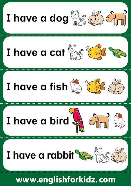 Short reading comprehension sentences for kindergarten, daycare, elementary school, special education students.