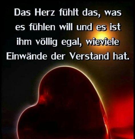 #dein #du #es #fuhlt #gartenentwurfe #herz #ist #leider #liebling #nicht #nichts #verstehst #weil So ist es Liebling. Leider. Verstehst du nicht weil dein Herz nichts fühlt.