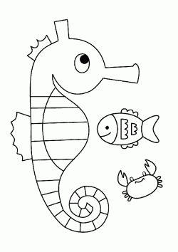 Deniz Ati Boyama Sayfasi Sea Horse Coloring Page Dibujo De