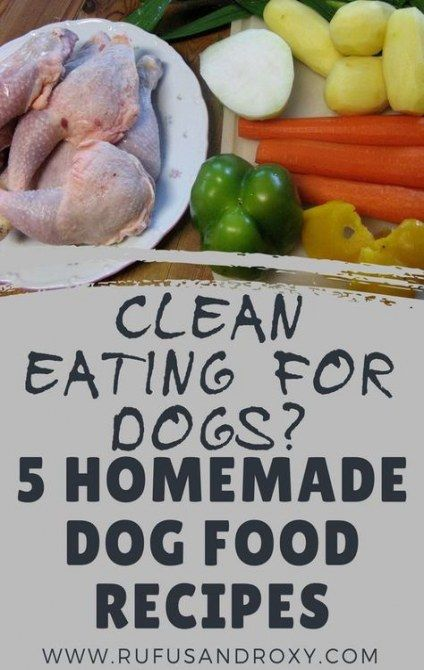 Best Dogs Food Homemade Senior 19 Ideas Dogs Food Dog Food
