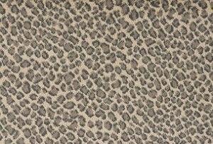 Lake Safari Royal Dutch Carpets Stanton Carpet Silvermine Carpetsforrent Stanton Carpet