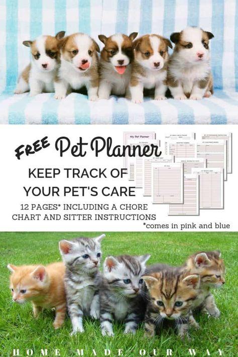 Pet Planner Printables Free Get Your Pet S Records Organized Pets Pet Care Your Pet