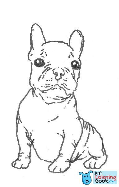 Willpower French Bulldog Coloring Pages To Print Free Books For