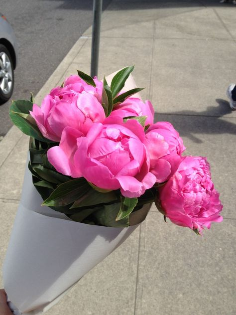 *♥*make sure when you buy these there are no ants on the stem or flower .