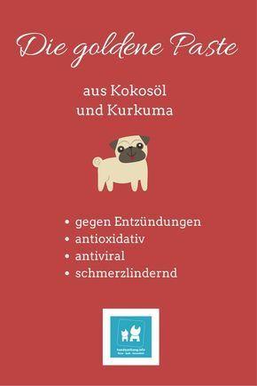Hausapotheke Fur Hunde Meine Favoriten Hunde Hausapotheke