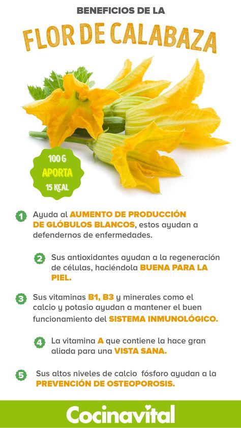 Beneficios de la flor de calabaza que tu salud agradecerá