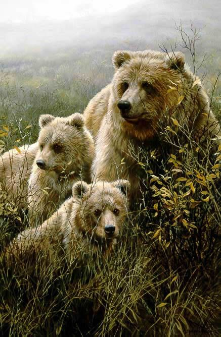 John Seerey-Lester - Denali Family - Grizzly Bears (Imperfect)