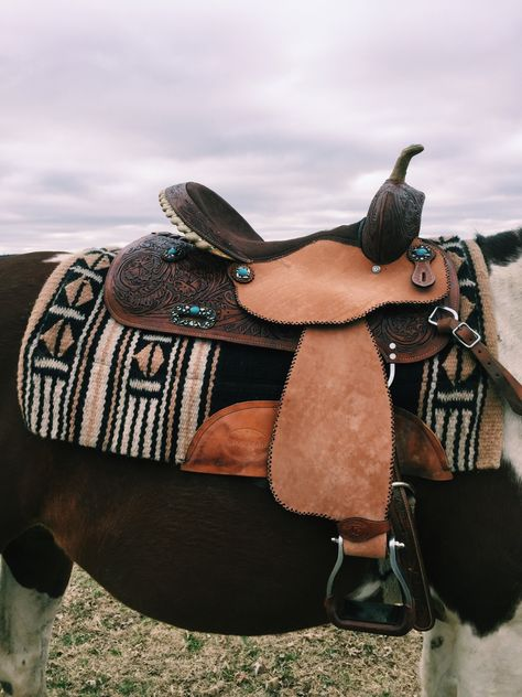 New post on folklifestyle Western Horse Tack, Western Riding, Horse Riding, Western Saddles, Cute Horses, Pretty Horses, Beautiful Horses, Western Photography, Horse Photography