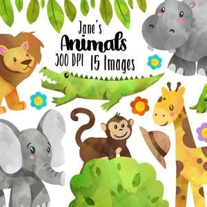 Watercolor Safari Animals Clipart Wild Animals Download Etsy In 2021 Animal Clipart Jungle Animals Clipart Safari Baby Animals