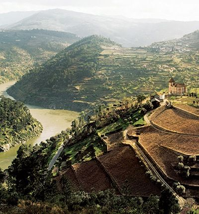 In Portugal's Douro Valley, a region wine lovers know for its rocky schist soils and staggering views, port wines reign. But the same grapes used for them—such as Tinta Roriz, sometimes called Aragonez and known as Tempranillo in Spain, and Touriga Nacional, considered Portugal's noblest grape—are now being turned into elegant non-fortified wines.