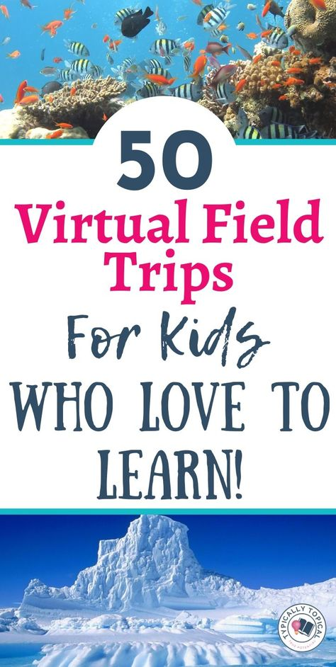 50 Virtual Field Trips for Kids Who Love to Learn Learning Websites, Educational Websites, Home Learning, Learning Activities, Kids Learning, Activities For Kids, Learning Quotes, Mobile Learning, Educational Leadership