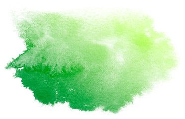 Abstract Green Watercolor On White Background This Is Watercolor