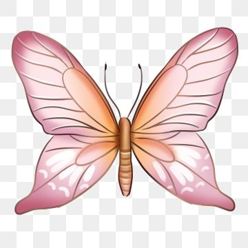 Beautiful Pink Butterfly Illustration Pink Butterfly Beautiful Butterfly Butterfly Png Transparent Clipart Image And Psd File For Free Download In 2020 Butterfly Illustration Pink Butterfly Beautiful Butterflies