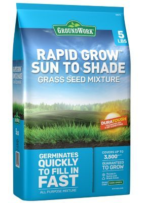 Before You Toss Grass Seed Onto Those Bare Spots Soak It In A Bucket Overnight With Some Beer The Beer Helps Pre Spring Lawn Care Lawn Maintenance Lawn Care
