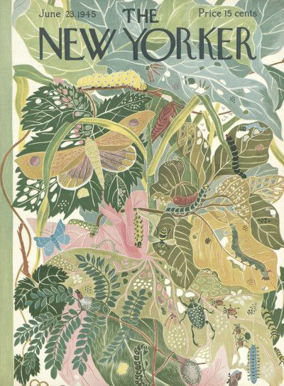 Vintage New Yorker covers // The New Yorker // vintage editorial illustration The New Yorker, New Yorker Covers, Art And Illustration, Poster Design, Art Design, Design Blog, Capas New Yorker, Cover Art, Illustration Botanique