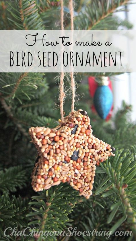 How to Make a Bird Seed Ornament - Just four easy steps and three ingredients - so easy a kid can do it and so lovely it makes the perfect gift for a neighbor or a friend!