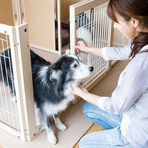 木製 サークル 多頭飼い ペットサークル 大型犬 サークル サークル プラス Fs80lp メッシュ 新商品 大型犬 犬 ペットサークル