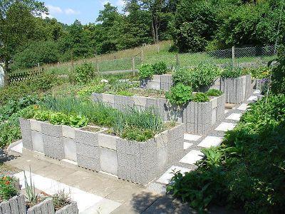 Podwyzszone Grzadki Warzywne Cinder Block Garden Garden Beds Raised Garden Bed Plans