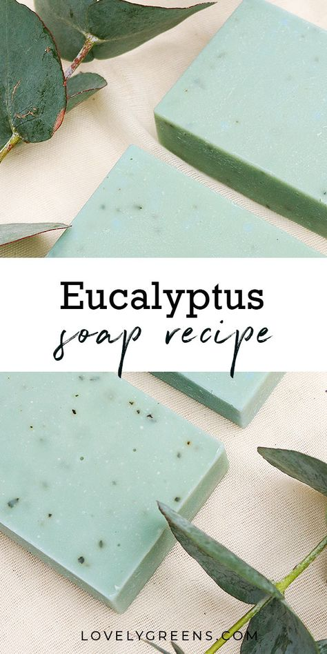 DIY instructions for making this Eucalyptus Soap Recipe. Eucalyptus essential oil opens airways making this a great soap for the cold and flu season soap Herbal Eucalyptus Soap Recipe to open airways and soothe congestion Handmade Soap Recipes, Soap Making Recipes, Handmade Soaps, Diy Soaps, Essential Oils Soap, Eucalyptus Essential Oil, Diy Eucalyptus Soap, Eucalyptus Leaves, Diy Cosmetic