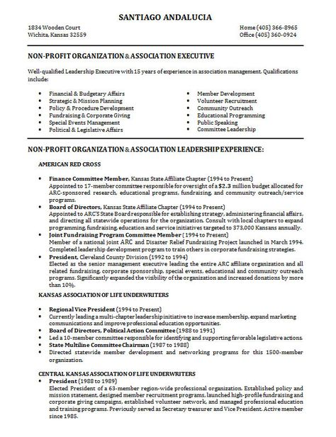 10 Samples of Professional Resume Formats You Can Use In Job - profesional resume format