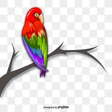 ภาพระบายส ร ปนกแก ว นกแก ว นก นกแก วภาพ Png และ Psd สำหร บดาวน โหลดฟร ในป 2021 นกแก ว นก ส