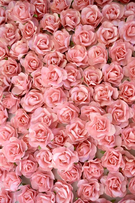 DIY Flower Backdrop Wall using Coral Paper Flowers by KVW cheap wedding decor ideas Flower Phone Wallpaper, Pink Wallpaper Iphone, Flower Wallpaper, Pink Background Wallpapers, Flower Wall Backdrop, Wall Backdrops, Diy Flowers, Paper Flowers, Exotic Flowers