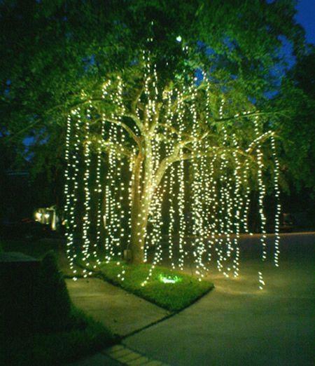 Diy Garden Lighting Ideas Backyard Lighting Fairy Lights Garden Backyard Party Lighting