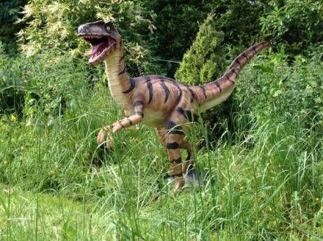 Perfect Design Toscano   Velociraptor Garden Ornament | Dinosaur Garden, Garden  Statues And Garden Ornament