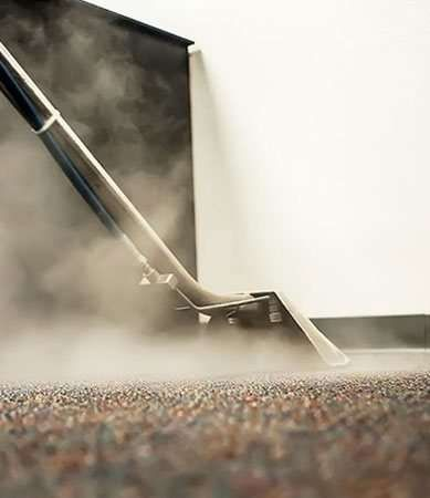 Safe And Dependable Carpet Cleaning Toowoomba S Service Provider Green Cleaners Team In 2020 How To Clean Carpet Green Cleaner Steam Clean Carpet