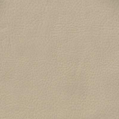 """Facade Color: Bronze Width: 54"""" Content: 100% Polyurethane Repeat: V 0"""" H 0""""Vinyl fabric. Tight grain faux leather pattern. Taupe color with a slight metallic finish. Perfect for kitchen chairs & barstools, ottomans & headboards. Not recommended for draperies or bedding. Suitable for Upholstery & Pillows Only Professional Dry Cleaning Recommended Add to Swatch Wall Our Price: $15.99 per yd"""