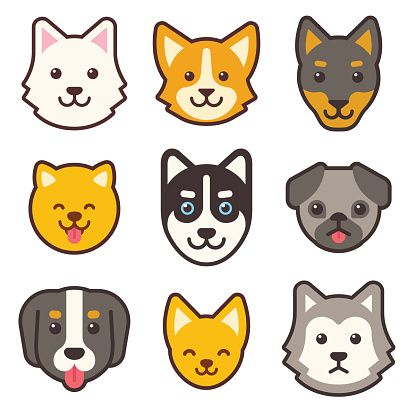 Cartoon Dog Faces Set Different Breeds Of Dogs Husky Corgi Pug Cartoon Dog Corgi Cartoon Puppy Cartoon