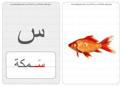 حرف منفصل كلمة صورة بطاقات الحروف والحيوانات 4 1 Fish Pet Pets Animals