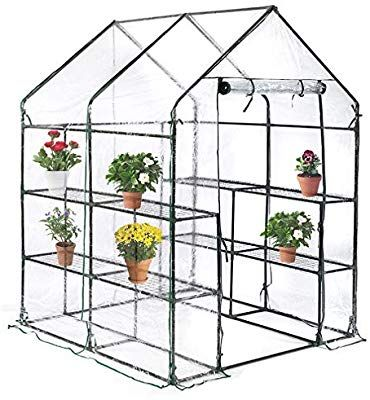 Amazon Com Bestmassage Portable Mini Greenhouse Indoor Outdoor Plant Shelves Tomato Canopy Walk In Walk In Greenhouse Mini Greenhouse Indoor Mini Greenhouse