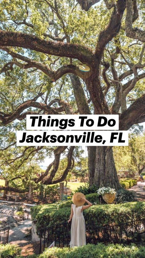 Things To Do Jacksonville, FL