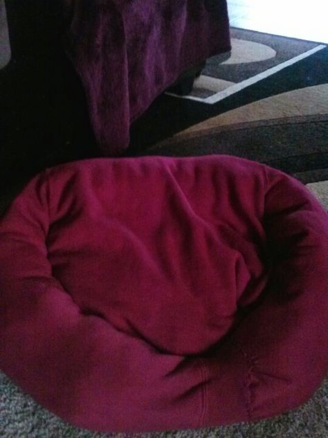 Dog bed out of a sweatshirt. Sew collar shut. Place old flat pillow in middle add stuffing in top and arms. Sew bottom of shirt closed. Tuck one sleeve into the other a sew shut. Voila...cute dog bed.