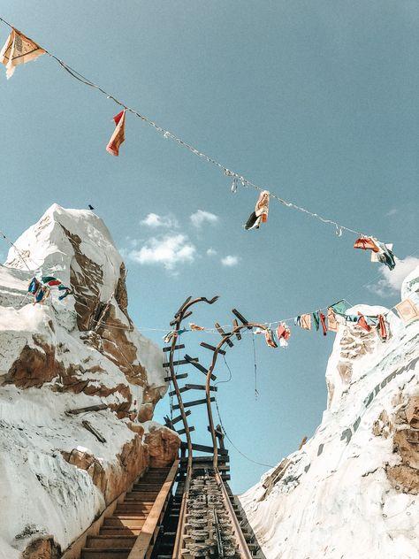 Expedition Everest at Walt Disney World Disney Day, Disney Theme, Cute Disney, Disney Parks, Disney World Rides, Walt Disney World, Disney Worlds, Orlando, Disney Aesthetic