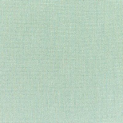 The Fabric Shoppe Solid Performance Fabric Color Spa Textured