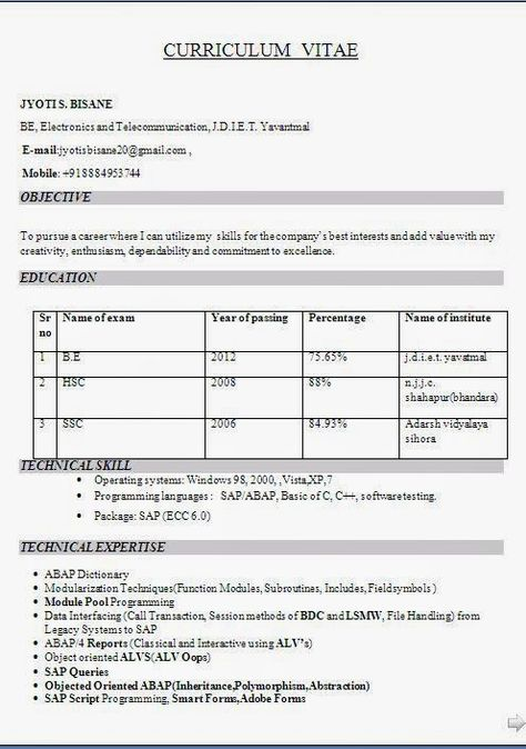 curriculum vitae template design Sample Template Example - resume format in pdf file