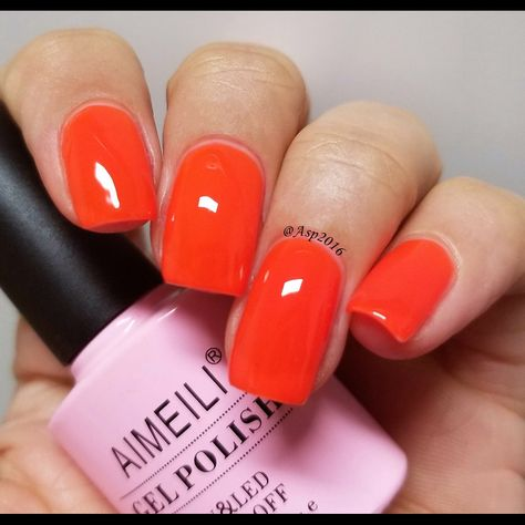 Look over here! The Neon Orange Zest color! You will get an orange color or a like red color depending on the layers you applied! Just make it opaque! #aimeili #aimeiligelpolish #gelnailpolish #nailpolish #gelnails #nails #nailarts #nailartdesigns #gelmanicure #diynails #manispedis #orangenails #neoncolor