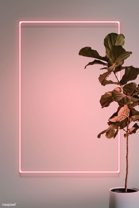 Pink neon lights frame with a fiddle leaf fig plant mockup design | premium image by rawpixel.com / HwangMangjoo