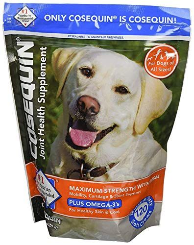 Home Best Dog Shop Nearby Me Joint Health Supplement Health Plus Dog Health