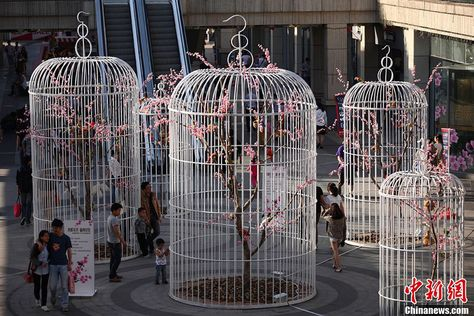Giant Birdcages Promote Green Lifestyle in Nanjing; -- Residents walk through giant birdcages at a square in Nanjing, the capital city of east China's Jiangsu Province on Sunday, May 12, 2013. Six giant birdcages with artificial trees, flowers and birds inside were displayed in order to promote nature, environmental protection and a green lifestyle.