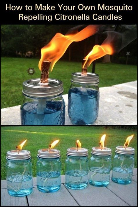It's a beautiful, balmy night. You decide to sit out and do a little star gazing. until the mosquitoes find you! Make mosquito repelling citronella candles! This little DIY project makes use of citronella. From backyard barbecues to Outdoor Crafts, Outdoor Projects, Outdoor Fun, Outdoor Decor, Citronella Candles, Diy Candles, Citronella Torches, Outdoor Candles, Citronella Plant
