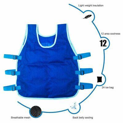 Ad Ebay Url 24 Ice Packs Cooling Vest Outdoor Fishing Adjustable