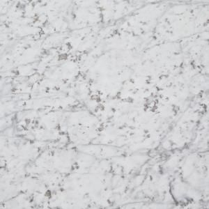 Lg Hausys Viatera 3 In X 3 In Quartz Countertop Sample In Rococo Lg M002 Vt The Home Depot Marble Countertops White Marble Countertops Marble Kitchen Counters