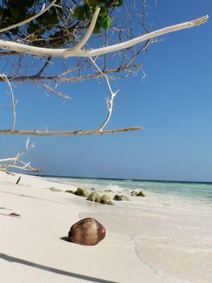 Aruba niederländisches Karibik Paradies   ABC Inseln