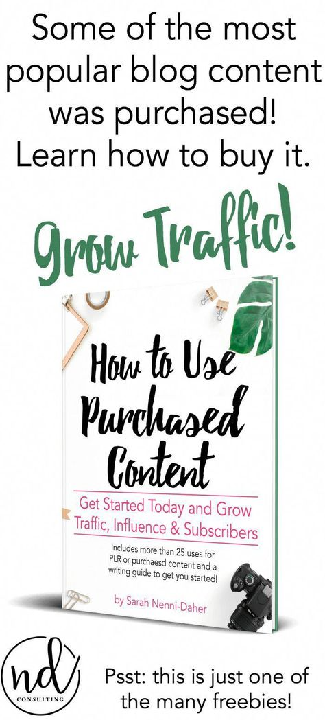 Learn how professional bloggers reach traffic goals, publish more often, and get love from the search engines! Pick up this free guide today.