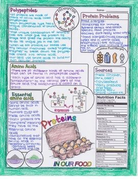 Proteins And Protein Structure Biology Doodle Diagram In 2020 Biology Doodles Biology Revision